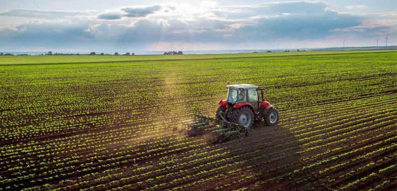 Αγροτικά - Ανθοκομικά